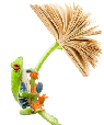 frog_anim2
